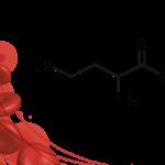Molecola omocisteina