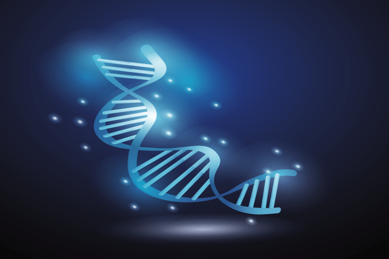 Elica DNA